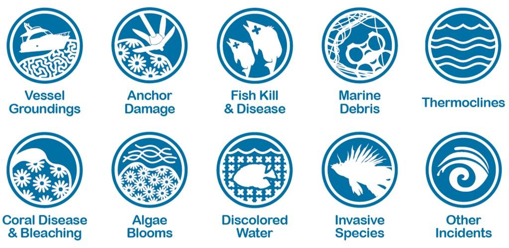 seafanincidenticons